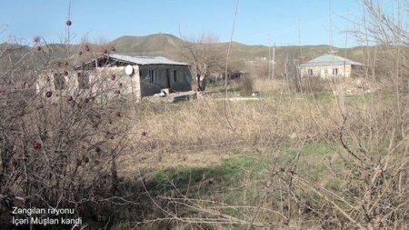Zəngilanın İçəri Müşlan kəndinin görüntüləri - VİDEO
